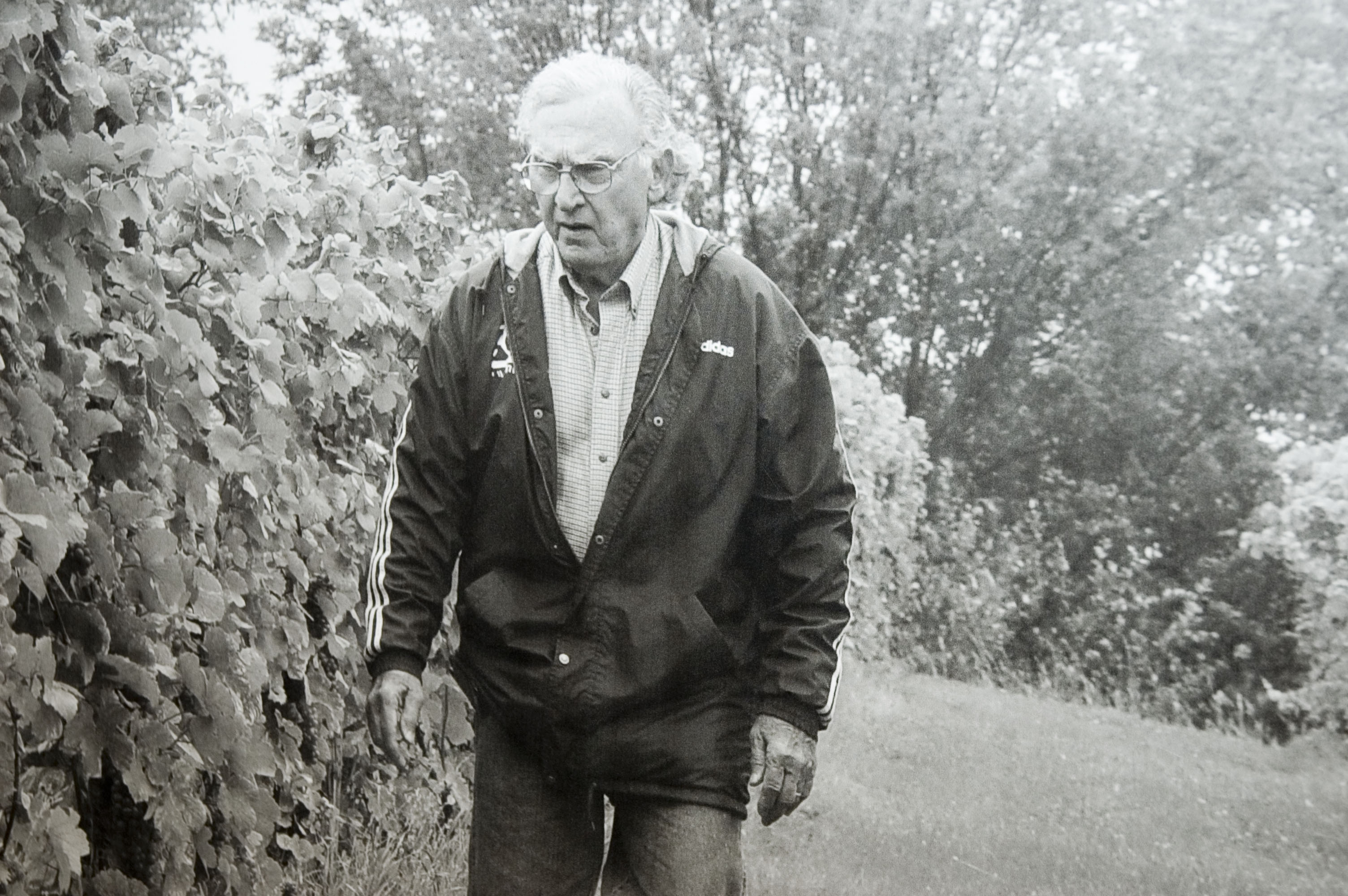 madonnas_father_in_his_vineyard2008